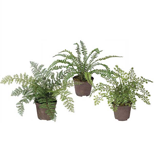 3 piece assortment of fake ferns in pots
