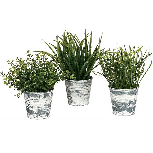 Wild Grass Tin Pots 3 Pieces Assorted