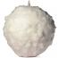 Snowball Apple Cinnamon Small
