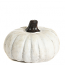 Cement Pumpkin Accent Small White