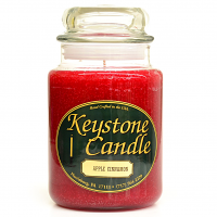 Apple Cinnamon Jar Candles 26 oz