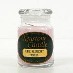 Black Raspberry Vanilla Jar Candles 5 oz