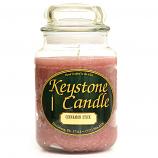 Cinnamon Stick Jar Candles 26 oz