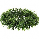 Boxwood Candle Rings 6.25 Inch