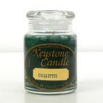 Eucalyptus Jar Candles 5 oz