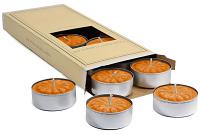 Spiced Pumpkin Scented Tea Lights