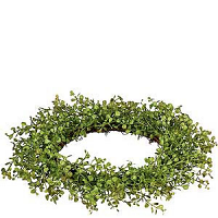 Baby Grass 6.5 Inch Candle Ring