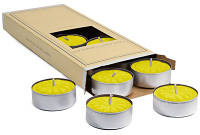 Tropical Pineapple Scented Tea Lights