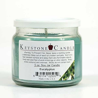 Eucalyptus Soy Jar Candles 5 oz