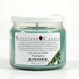 Eucalyptus Soy Jar Candles 5 oz