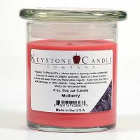Mulberry Soy Jar Candles 8 oz