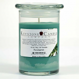 Eucalyptus Soy Jar Candles 12 oz Madison