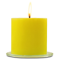 Citronella 6 x 6 Outdoor Candle
