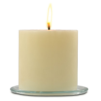 French Vanilla 6 x 6 Outdoor Candle