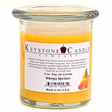 Mango Spritzer Soy Jar Candles 8 oz Madison