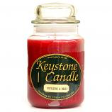 Mistletoe and Holly Jar Candles 26 oz