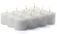 288 Case White Unscented Votive Candles Bulk 10hr