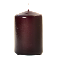 Plum 3 X 4 Unscented Pillar Candles