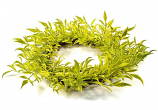 Broad Leaf Wild Grass 6.25 Inch Candle Ring