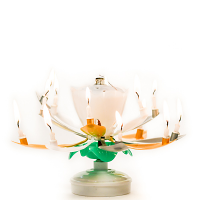 Gold Silver Musical Flower Birthday Candles