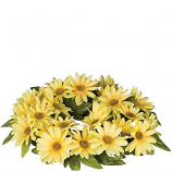 Daisy 6 Inch Flower Candle Ring Yellow
